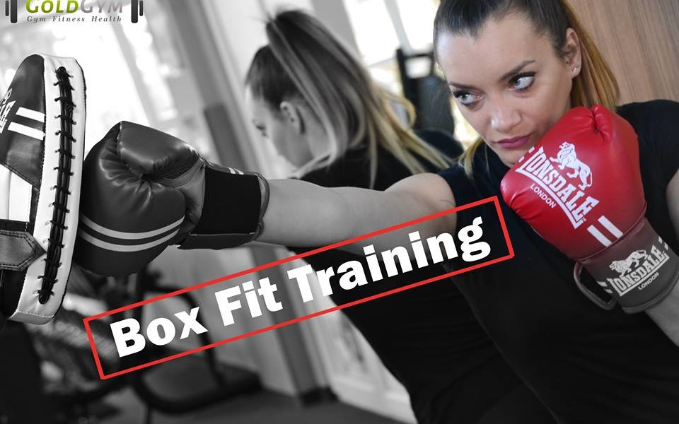 Box  Fit Training